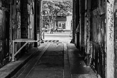 I wanted the whole world or nothing. (Frank Hendriks Photography) Tags: frankhendriks berlin kastanienallee deutschland germany mood atmosphere bw monochrome