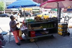 DSC07380 (RosieTulips) Tags: chinatown manhattan