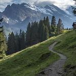 North Face Trail thumbnail
