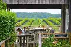 Paumanok Vineyards (Joe Shlabotnik) Tags: 2018 august2018 paumanok winery vineyard longisland aquebogue northfork afsdxvrzoomnikkor18105mmf3556ged