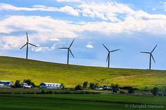 Windmills and farmhouses (cstevens2) Tags: alberta canada ontheroad onderweg windmills windmolens farmhouses countryside boerderijen platteland
