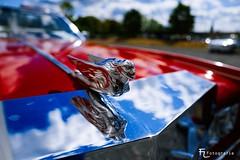 Cadillac - Kühlerfigur