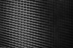 mesh (fhenkemeyer) Tags: mosquitonet macromondays hmm macro abstract bw mesh
