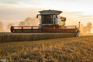 Harvest Time by CLAAS