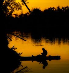 Untangling (Anvilcloud) Tags: appleton easternontario lanarkcounty mississippimills mississippiriver sunset fisherman