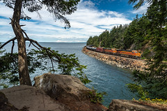 BNSF Oil Train at Bellingham, WA (alastairpoll) Tags: bnsfbellinghamsubdivision bnsf bnsfrailway gees44c4 bellinghambay train