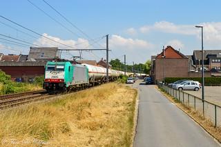 LINEAS HLE 2905  Beveren-Waas