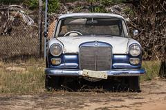 Old forgotten Mercedes (Arranion) Tags: mercedes old vintage retro forgotten car auto automobile motor motoring lights grill rust wreck