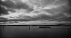Break from Summer | Seattle (sunrisesoup) Tags: lakewashington madronabeach seattle bellevue wa usa clouds monochrome bw silverefex