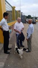 Con el padre (y el perro) de David, llegada a la península de Santa Elena