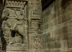 Temple Architecture (Balaji Photography - 5 M views and Growing) Tags: kanchipuram tamilnadu india in indiatourism architecture templearchitecture templesofindia temples sculpture intricacy artistic stoneart pillars canon canondslr canoneos canon70d