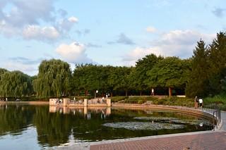 Evening light - Chicago Botanic Garden