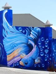 MEETING OF STYLES 2018 (paramonguino) Tags: p1490038 carrizal ingenio grancanaria islascanarias canaryislands kanarischeinseln graffiti streetart