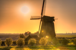 A Dutch mill basking in the sunlight.