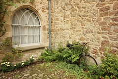The Cycle Of Life (MedievalRocker) Tags: ferns bicycle window flowers downpipe creepers mote igthammote nationaltrust