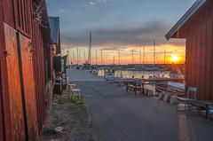 Harbor mood (RdeUppsala) Tags: östersjön öland baltic báltico puerto atardecer botes segelbåt yate yatch sweden suecia sverige sunset sky sea solnedgång summer verano sommar ricardofeinstein byxelkrok hamn