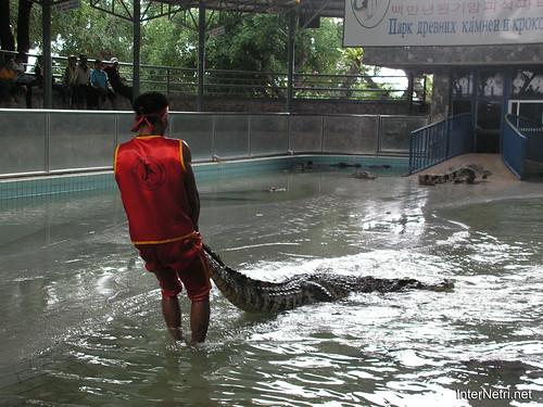 В пащу крокодилу Паттайя Таїланд Thailand InterNetri 30