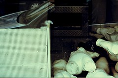 The Valley Of The Dolls : Aftermath (Storyteller.....) Tags: afermath valley dolls vitrine mannequin broken pieces destroyed