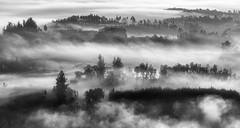 Val do Ulla (Feans) Tags: sony a7r a7rii ii fe 100400 gm ulla neboa fog mist galiza galicia