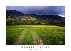 Hunter Valley fields (sugarbellaleah) Tags: storm sky weather climate huntervalley field paddock grass yellow flowers wildflower tracks cartracks hills mountains green lush landscape australia scenic trvel tourism beauty nature