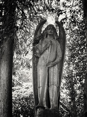20180518-0094-Edit (www.cjo.info) Tags: 19thcentury 19thcenturyneogothic bw england europe europeanunion highgate highgatecemetery highgatecemeterywest london m43 magnificent7 magnificentseven magnificentsevengardencemeteries microfourthirds nikcollection olympus olympuspenfgzuikoautos40mmf14 olympuspenf penfmount silverefexpro silverefexpro2 unitedkingdom victoriangothic westerneurope angel animal architecture art blackwhite blackandwhite blur bokeh carving cemetery classiclens death decay digital fauna flora focusblur girl gothic gothicrevival gravegraveyard legacylens manualfocus monochrome mythicalcreatures overgrown people plant sculpture shallowdepthoffield statue stone stonework tree victorian wing wingedcreature woman wood wooded