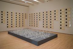 DSC_0165 (rlnv) Tags: california bayarea sanfrancisco nikond3300 1855mmf3556gvrii museum sfmoma sollewitt artist