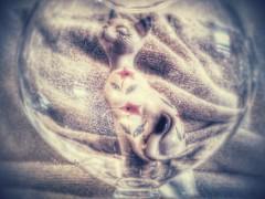Memory Bubbles (rhonda_lansky) Tags: glass memory