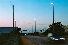 I souldn't be here. (Domenico Busco) Tags: film 35mm kodak color apulia puglia sunset tree nature colorplus plus nikon nikkor 70mm f3 3 summer