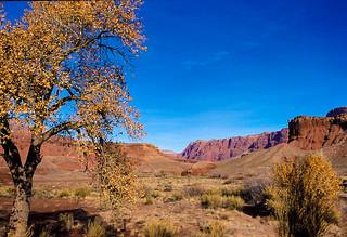 Paria Canyon Arizona