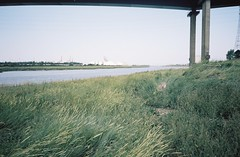 On Lamplighter's Marsh (knautia) Tags: lamplightersmarsh riveravon avonmouth bristol england uk august 2018 ishootfilm olympus xa2 olympusxa2 nxa2roll54 heatwave river avon m5 motorway motorwaybridge royalportburydock bristolport naturereserve 160iso kodak portra