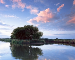 In the morning colors (fotoswietokrzyskie) Tags: sky water wood park lake grass river nida morning landscape mamiyarz67ii kodak ektar100 analog medium format 6x7 sekor50mm dawn