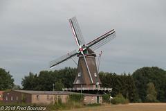 """De Zwiepse Molen"" (Fred / Canon 70D) Tags: canon canon70d canoneos sigma zwiep thenetherlands mill windmill erfgoed historicarchitecture sigma18300mmf3563dcmacrooshsmc bw bwcirpolhtcmrcnanoxsprodigital72mmkäsemann käsemann korenmolen"