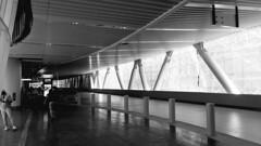 (sftrajan) Tags: transbaytransitcenter architecture sanfrancisco busstation bollard transbayterminal newtransbayterminal 2018 pelliclarkepelli