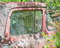 Old Car City 122 (augphoto) Tags: augphotoimagery abandoned decay old truck vehicle weathered white georgia unitedstates
