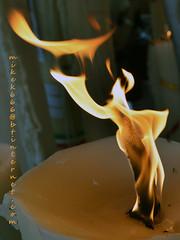lourdes candle 1 august 2018