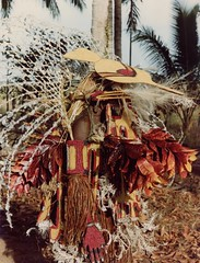 Afdrukken-div-003b (Stichting Papua Erfgoed) Tags: stichtingpapuaerfgoed pace nieuwguinea nederlandsnieuwguinea irianjaya papua papuaheritagefoundation voormalignederlandsnieuwguinea irianbarat anthonyvankampen