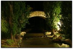 Puente romano, Aranda de Duero (Burgos, España) (Jesús Cano Sánchez) Tags: elsenyordelsbertins canon eos20d tamron18200 vacances2016 espanya españa spain castella castilla castellailleo castillayleon burgosprovincia arandadeduero pont puente bridge romano roma roman romanic romanico romanesque middleages riu rio river