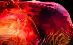 A spirited pursuit.   #feelmyneeds #classic #graphic #spiritual #majestic_people #ethereal_moods #artofvisuals #lightandshadow #moodygrams #art #Flickr_mood #portrait #portraitcentral #pursuitofportraits #london #expressionism #humanedge #rsa_portraits #o (jophipps1) Tags: london moodygrams agameoftones flickrportraits artofvisuals flickrmood portraitcentral of2humans lightandshadow etherealmoods feelmyneeds graphic instagood art expressionism pursuitofportraits humanedge majesticpeople portrait ethereal portraitsociety flickr classic portraitpage rsaportraits spiritual