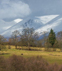 Last of the Winter Snow (john.gilmore57) Tags: landscape mountains scotland lomond nikon d7200