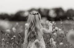 La Belle au bois dormant (Callie-02) Tags: féerique portrait monochrome nb bokeh proximité profondeurdechamp canon douceur romantique cheveux enfant été fleur champ
