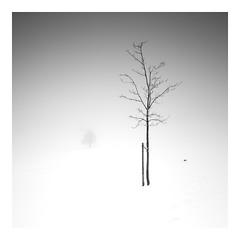 So quiet Ii (ArztG.|Photo) Tags: love peace photography austria atmosphere arztg|photo