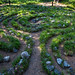 Labirinto Avalon