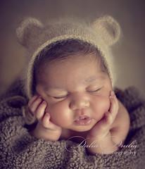 newborn (Dalia Drulia) Tags: newborn nynewbornphotographer newbornny newbornphotographerny druliaphoto druliaphotography babies babyphotographer beautiful canon cute love family