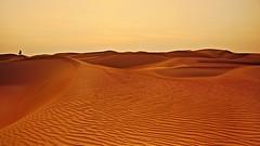 The Watcher (Sanjiban2011) Tags: alrazeen desert desertscape minimalistic minimalism landscape sand sanddunes sandtexture outdoor silhouette nature dusk alone nikon d750 tamron tamron2470