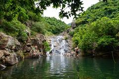 DSC_1847 (sch0705) Tags: hk hiking shuilochostream lantau stream
