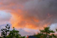 Clouds (ivlys) Tags: darmstadt sonnenuntergang sunset wolken clouds feurig fiery baum tree natur nature ivlys