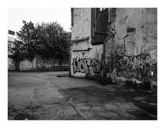 160820_144735_iphone5s_antwerpen_vleminckveld (A Is To B As B Is To C) Tags: aistobasbistoc b belgië belgium antwerpen antwerp vleminckveld desolate tag tags graffiti streetart parkinglot abandoned tree bw monochrome blackwhite blackandwhite phone phonography iphone5s