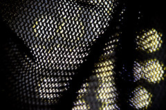 Macro mesh (donjuanmon) Tags: donjuanmon nikon macro macromondays hmm mesh backlighted texture theme weave
