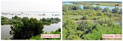 Wasserstand (German Circle) Tags: elbe mecklenburgvorpommern fluss wasser landschaft landscape wasserstand