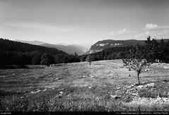 Col du Rousset (Ludtz) Tags: ludtz mamiya mamiyapresssuper23 sekor50|63 negative film ilfordpanfplus bw noirblanc mediumformat moyenformat 6x9 vercors montagne mountain mountains montagnes plateauduvercors drôme 26 saintagnanenvercors coldurousset plateau iso50